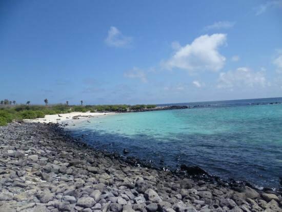 santa-fe-island-tour-from-santa-cruz-galapagos