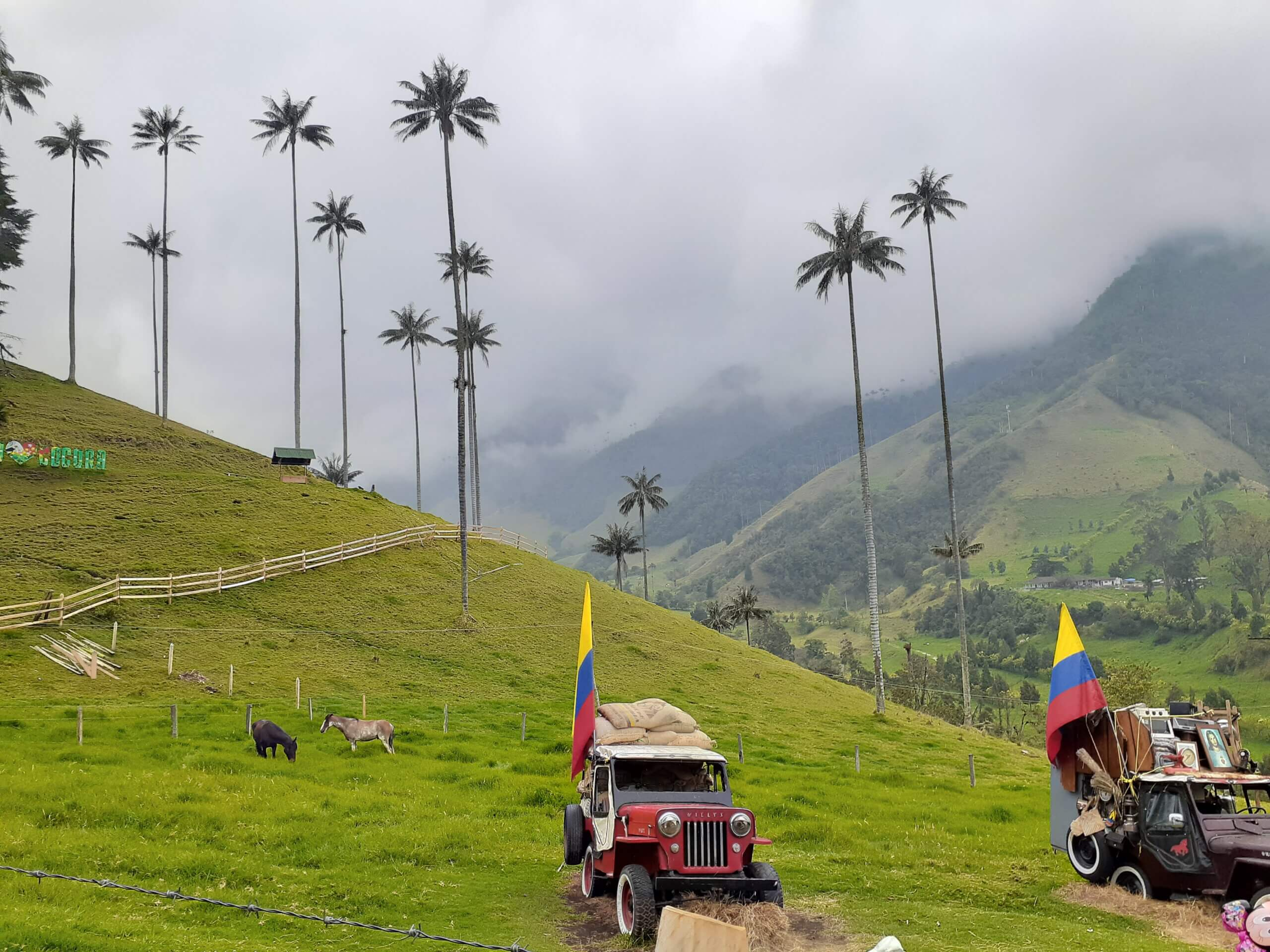colombian-highlights-15-days-tour-starting-in-bogota