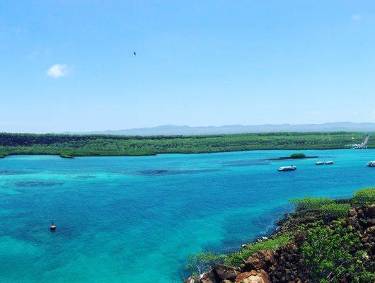 top-5-galapagos-island-hopping-tours