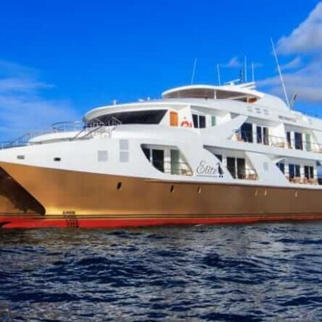 Elite-luxury-galapagos-cruise