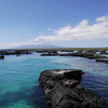los-tuneles-day-tour-from-isabela-island-galapagos