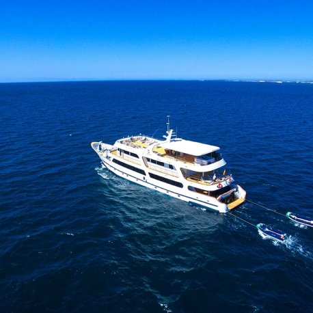 Odyssey-first-class-galapagos-cruise