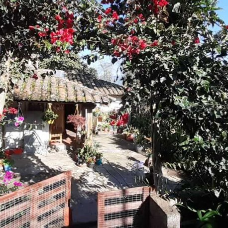 Abuela-House-local-Experience-Tour-in-Quito