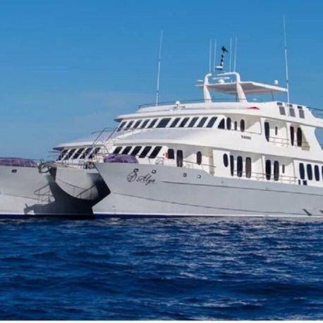 Alya-luxury-galapagos-cruise