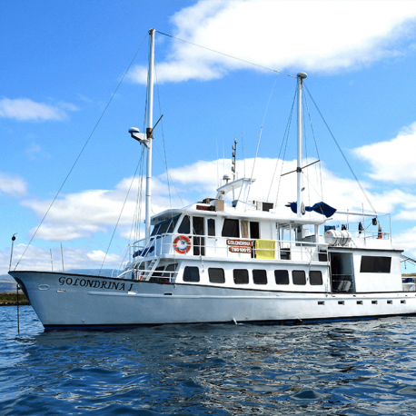 golondrina-budget-galapagos-cruises