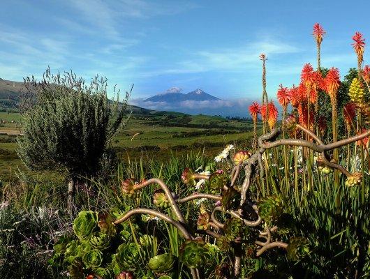 visiting-ecuador-after-covid-19